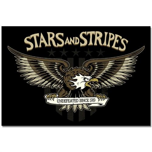 Stars And Stripes - Eagle, Aufkleber